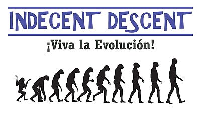 Indecent Descent - Viva La..